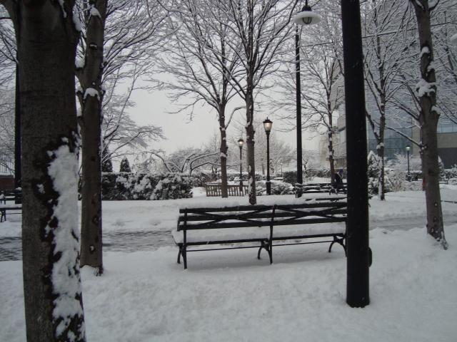new york com neve